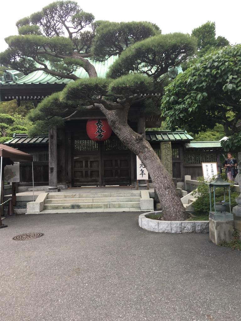 f:id:TokuheiKumagai:20190612222823j:image