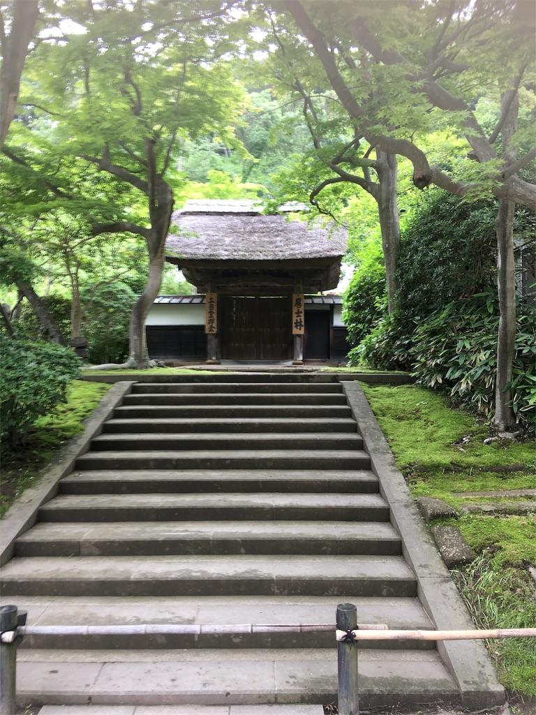 f:id:TokuheiKumagai:20190612222843j:image