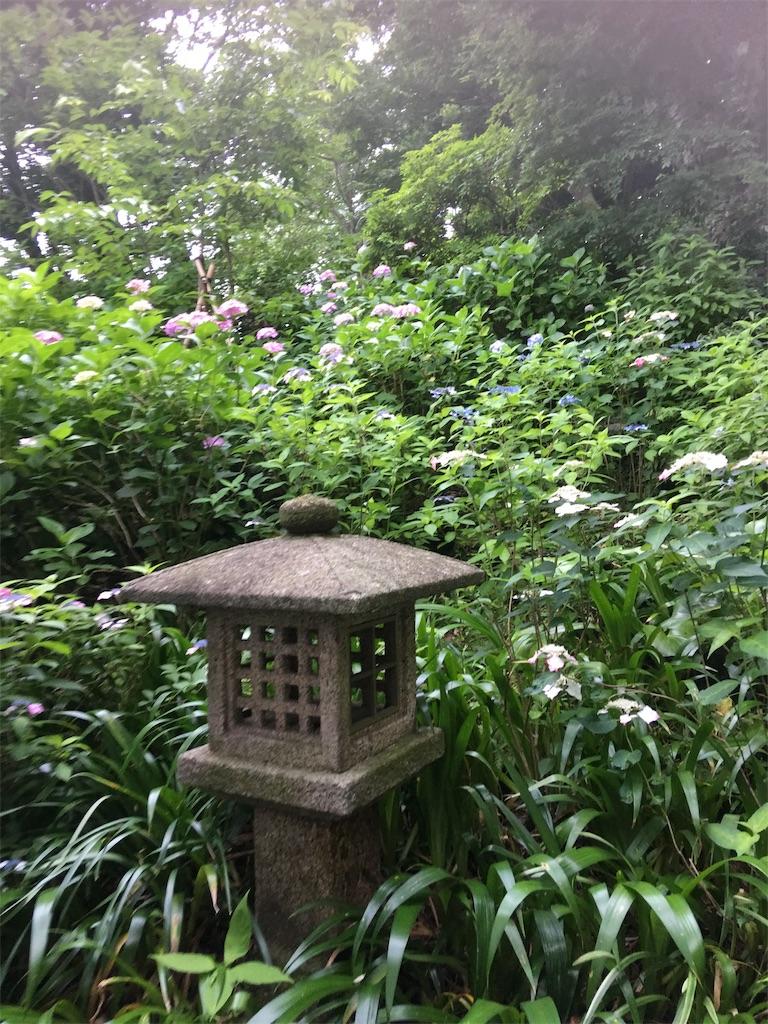 f:id:TokuheiKumagai:20190612222926j:image