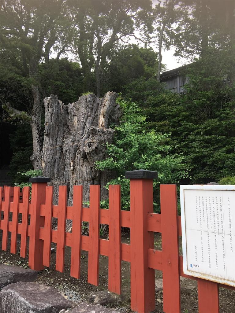 f:id:TokuheiKumagai:20190612222937j:image