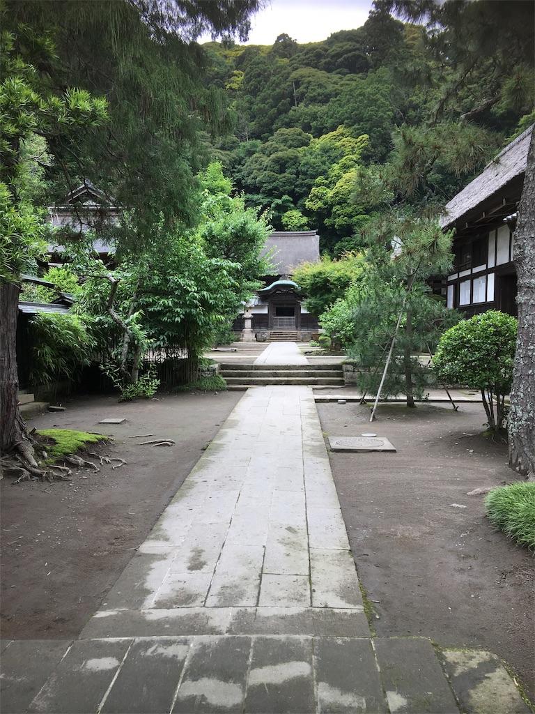 f:id:TokuheiKumagai:20190612222944j:image