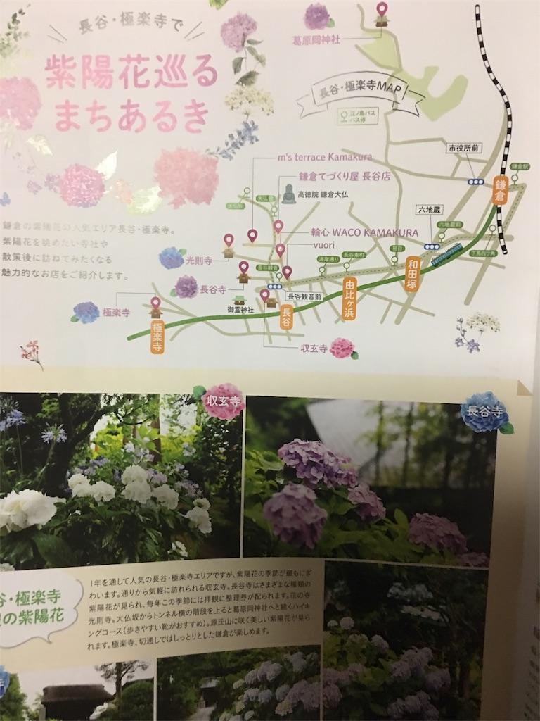 f:id:TokuheiKumagai:20190612223007j:image
