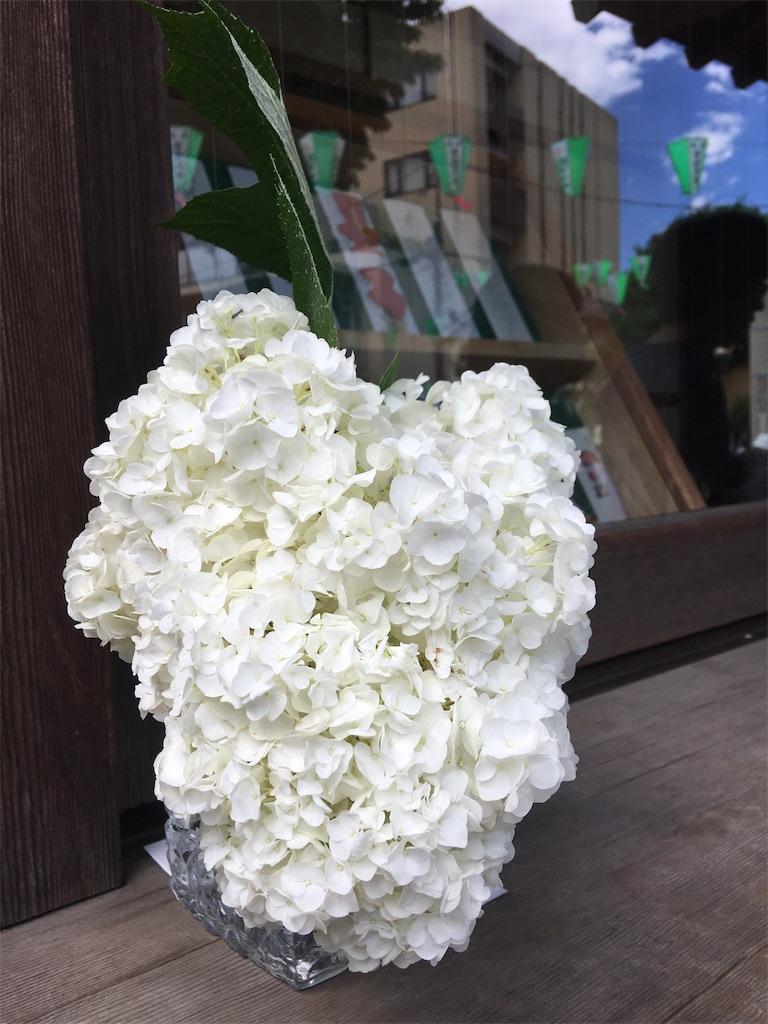f:id:TokuheiKumagai:20190617001550j:image