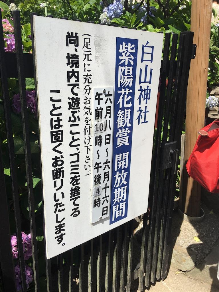 f:id:TokuheiKumagai:20190617001702j:image