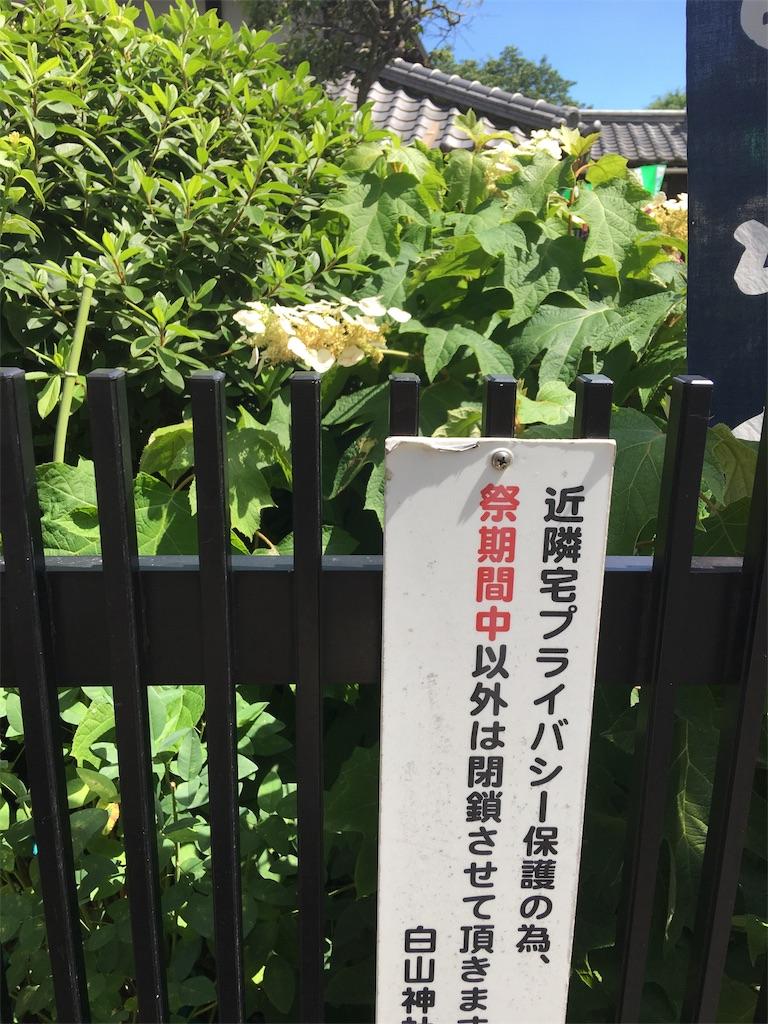 f:id:TokuheiKumagai:20190617001709j:image