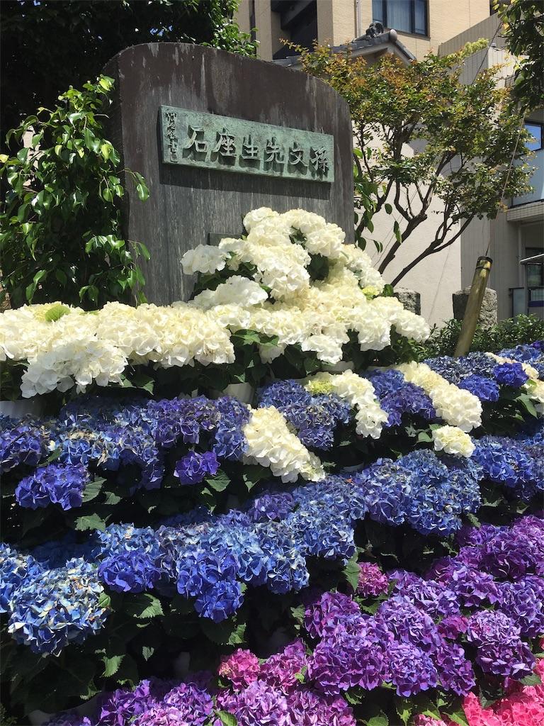 f:id:TokuheiKumagai:20190617002640j:image