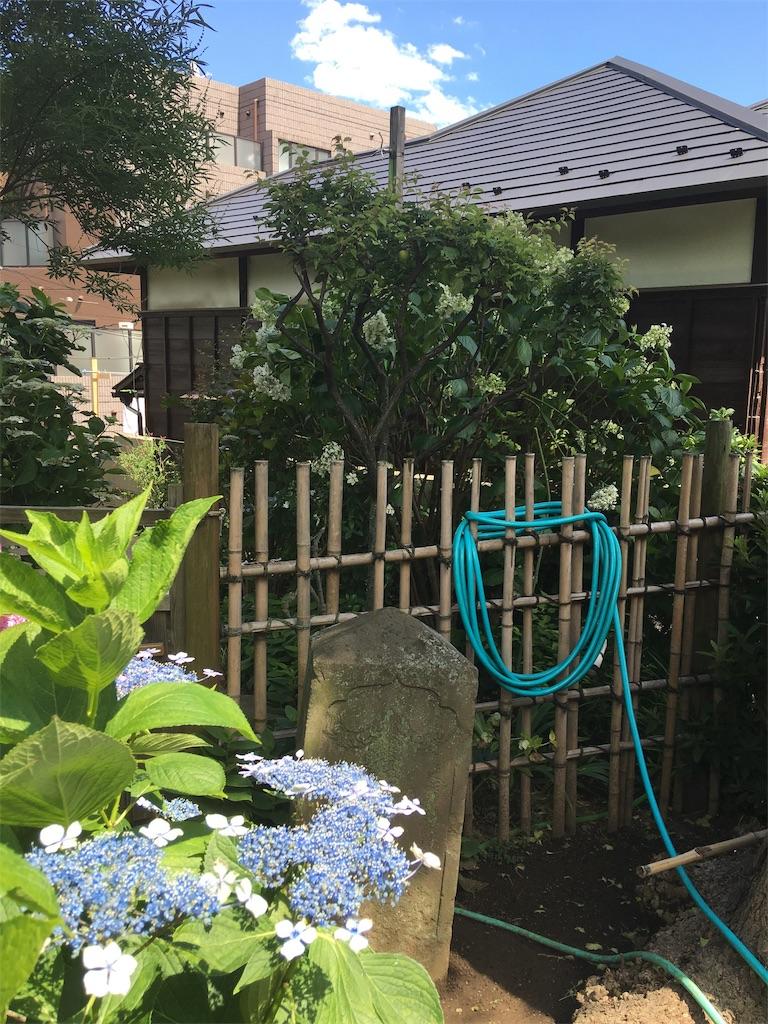 f:id:TokuheiKumagai:20190617002712j:image
