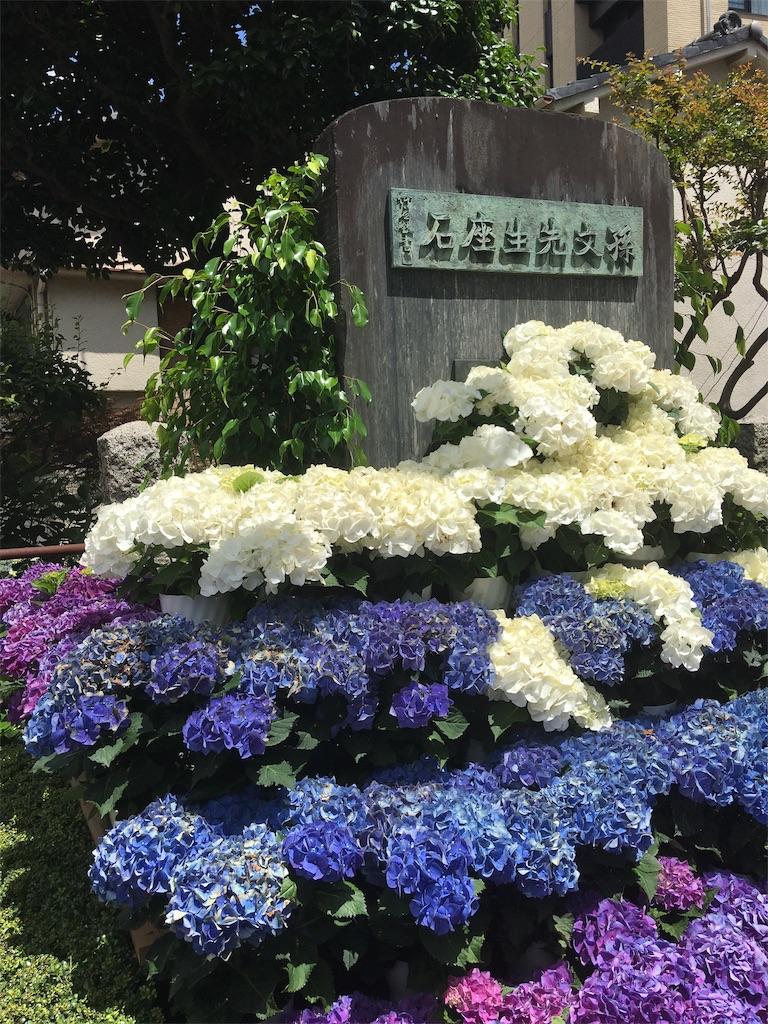 f:id:TokuheiKumagai:20190617002743j:image