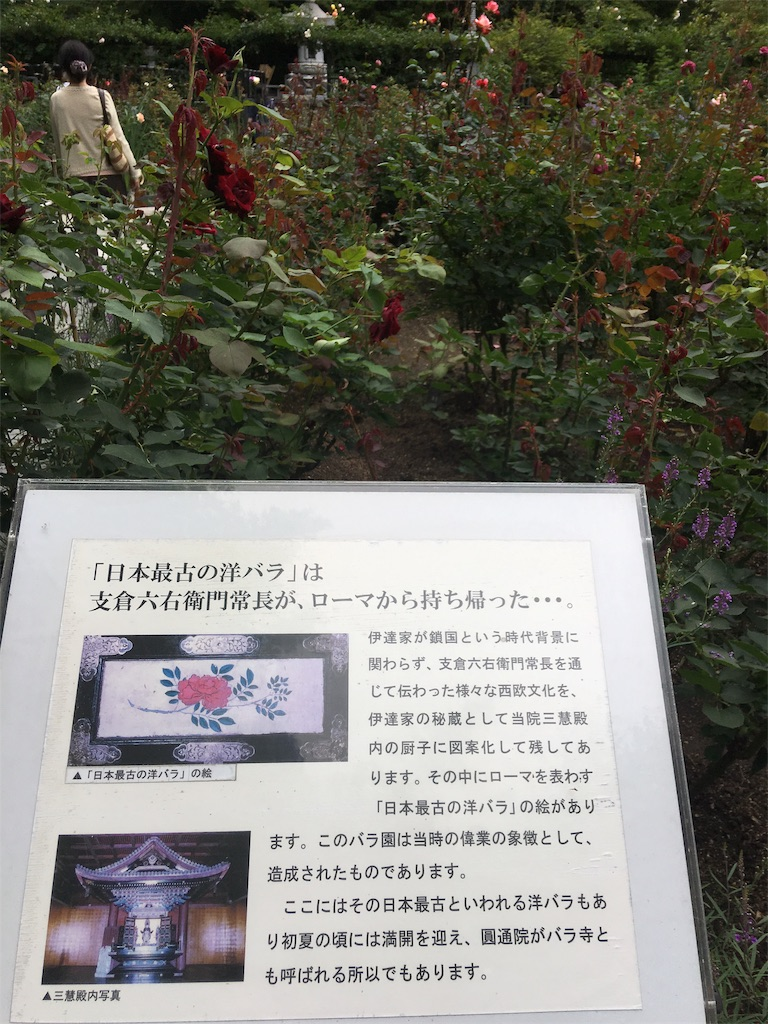 f:id:TokuheiKumagai:20190705235535j:image