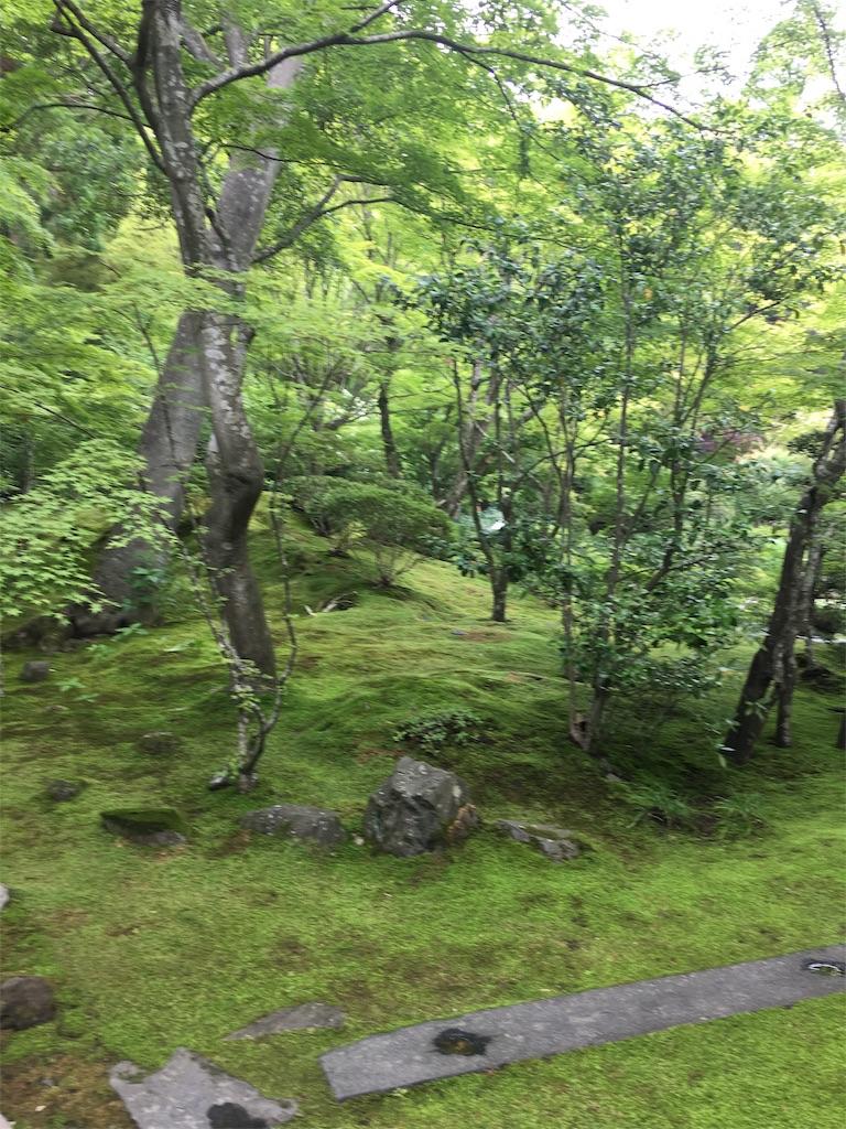 f:id:TokuheiKumagai:20190705235539j:image