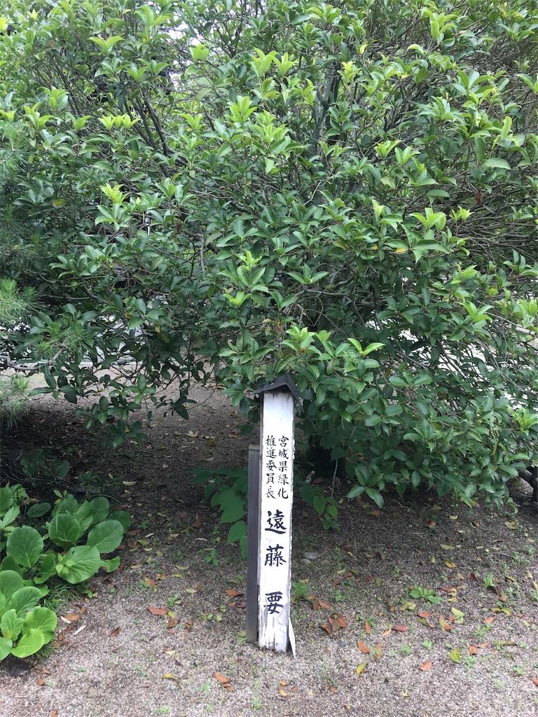 f:id:TokuheiKumagai:20190705235543j:image