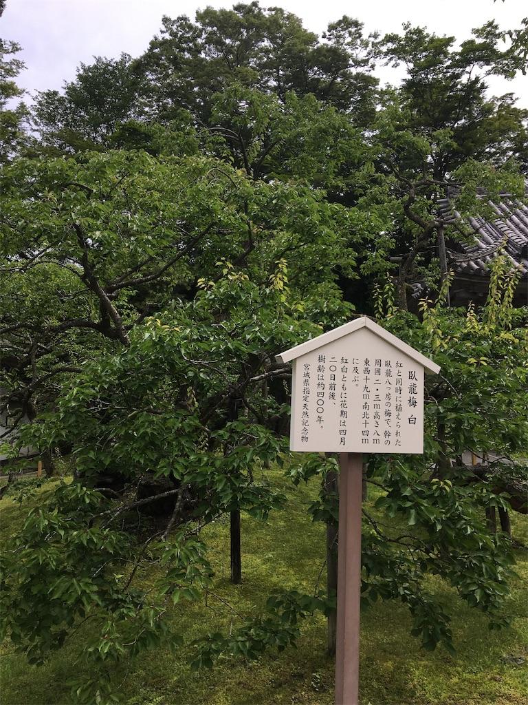 f:id:TokuheiKumagai:20190705235631j:image