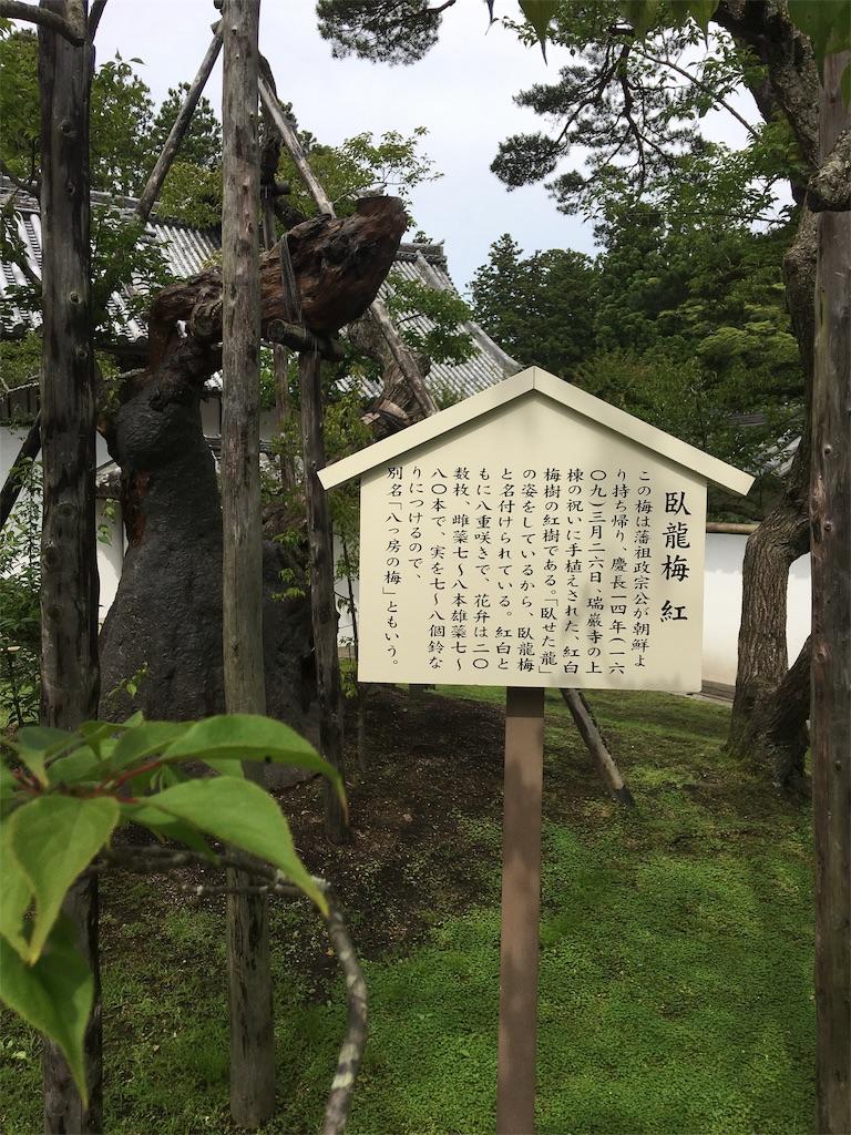 f:id:TokuheiKumagai:20190706000359j:image