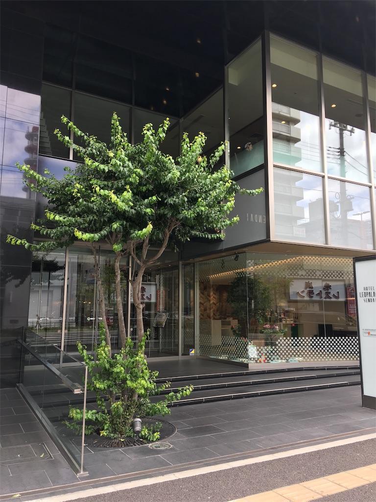 f:id:TokuheiKumagai:20190710234445j:image