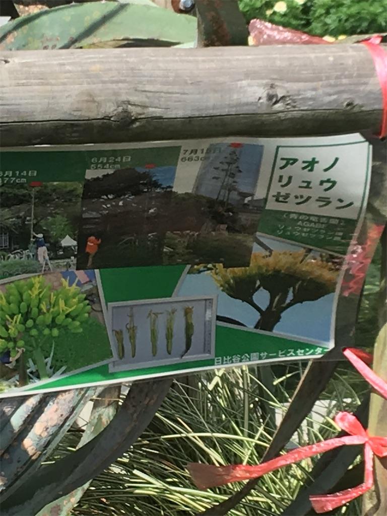 f:id:TokuheiKumagai:20190728231900j:image
