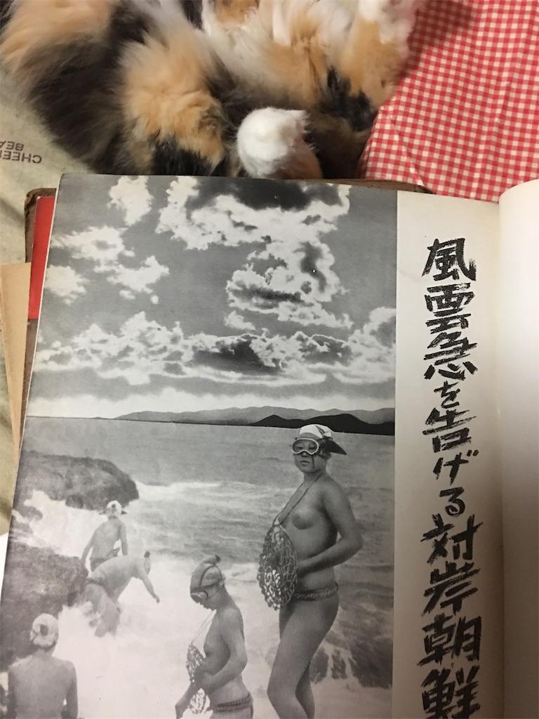f:id:TokuheiKumagai:20190809222103j:image