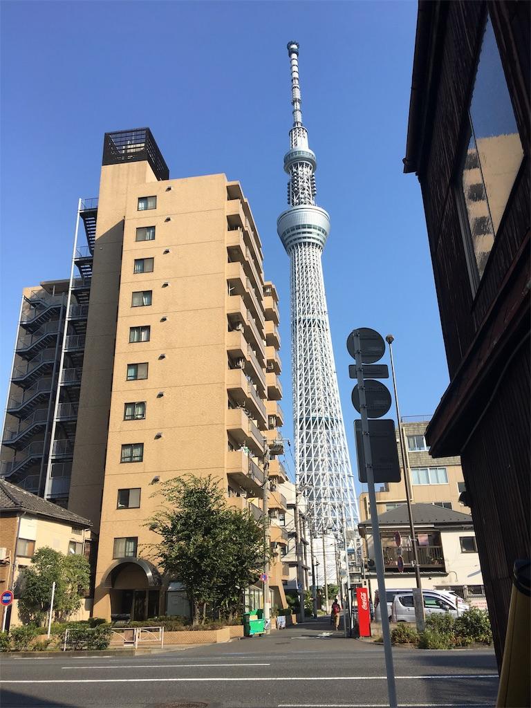f:id:TokuheiKumagai:20190810213338j:image