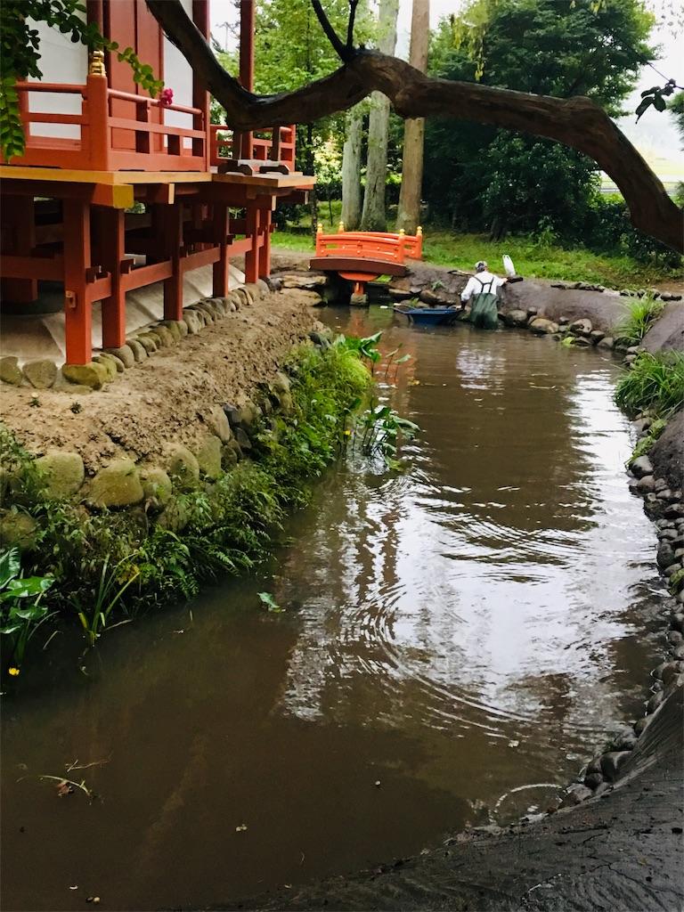 f:id:TokuheiKumagai:20190924062556j:image