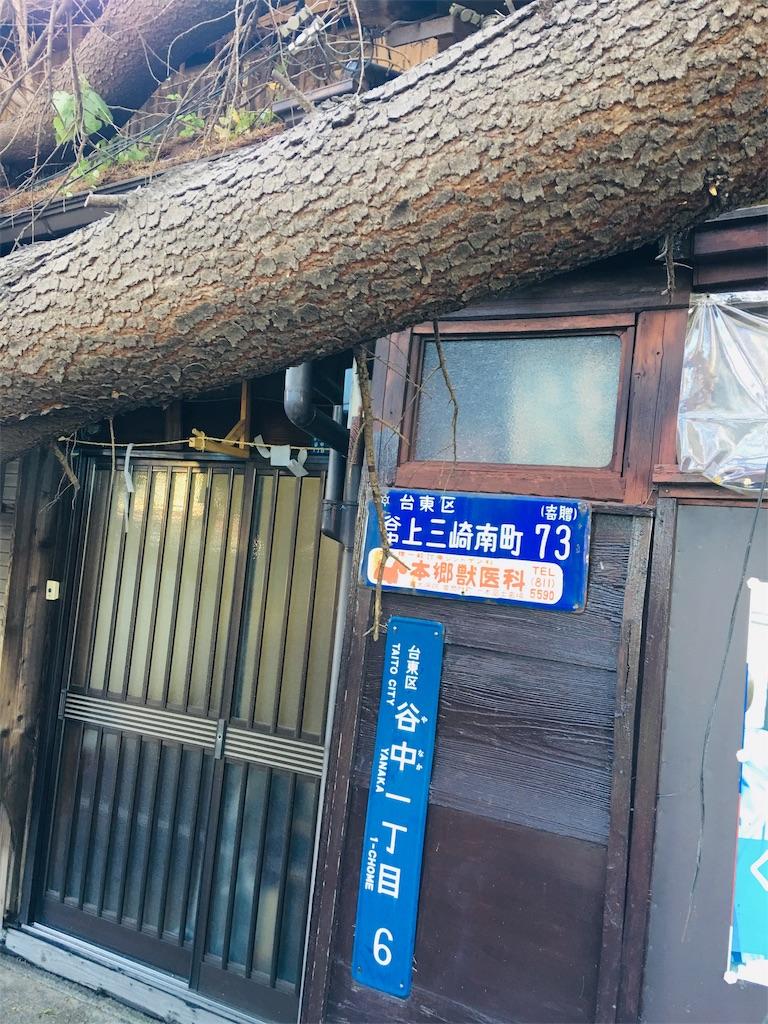 f:id:TokuheiKumagai:20191013224707j:image