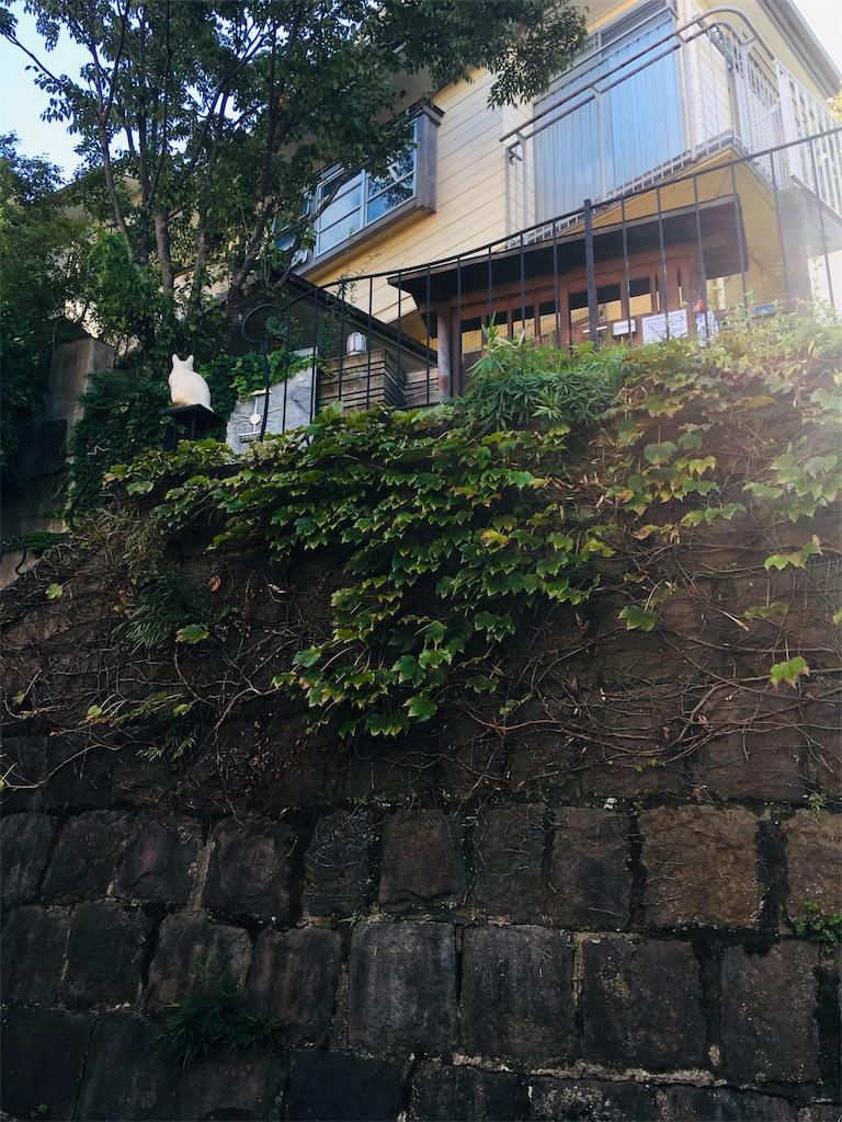 f:id:TokuheiKumagai:20191013224804j:image