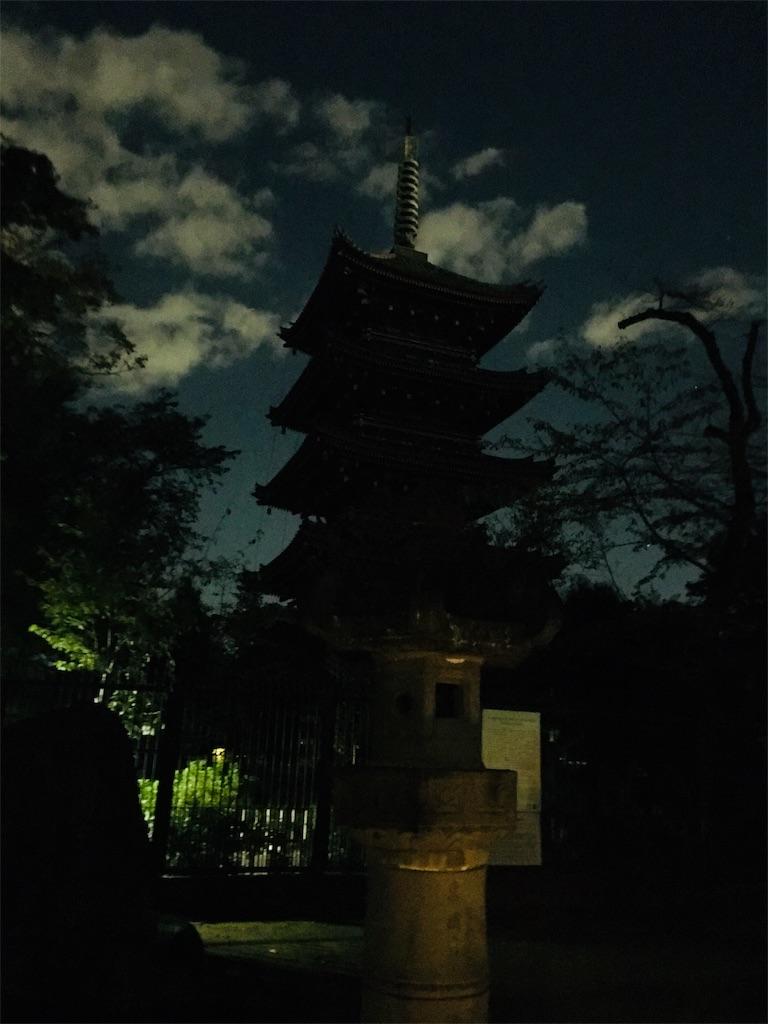 f:id:TokuheiKumagai:20191105235219j:image