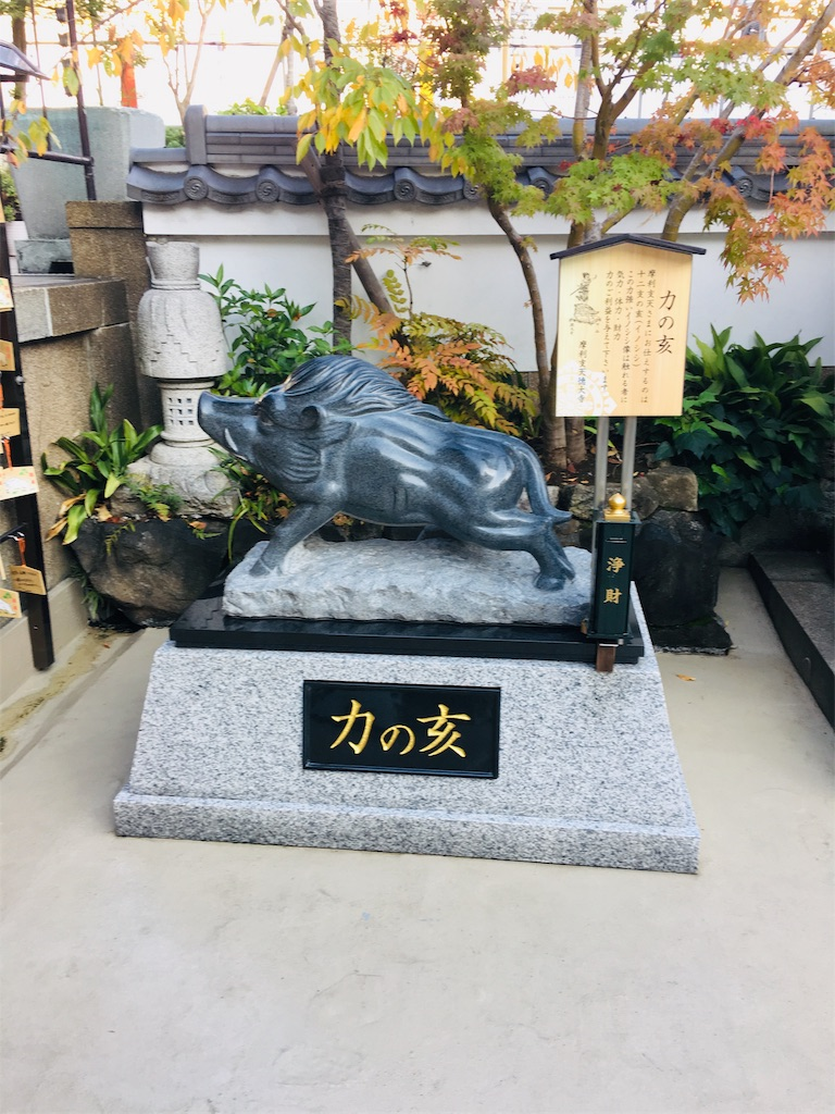 f:id:TokuheiKumagai:20191105235313j:image