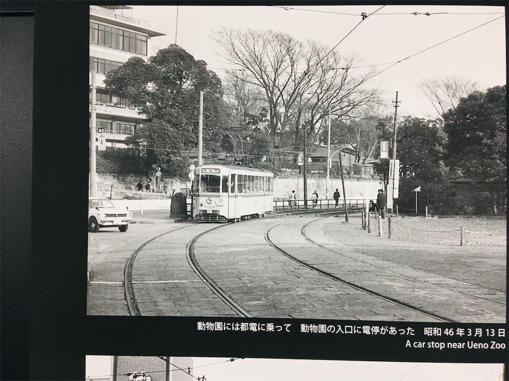 f:id:TokuheiKumagai:20191116234327j:image