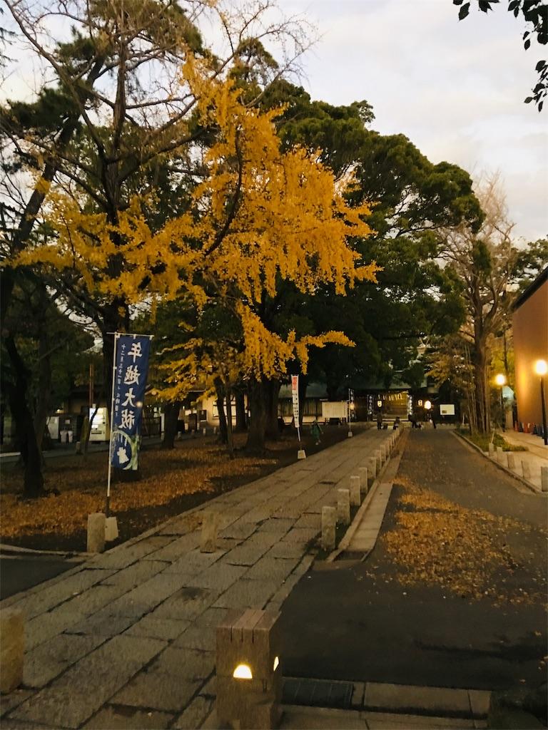 f:id:TokuheiKumagai:20191203213440j:image