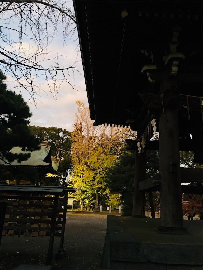f:id:TokuheiKumagai:20191203213512j:image