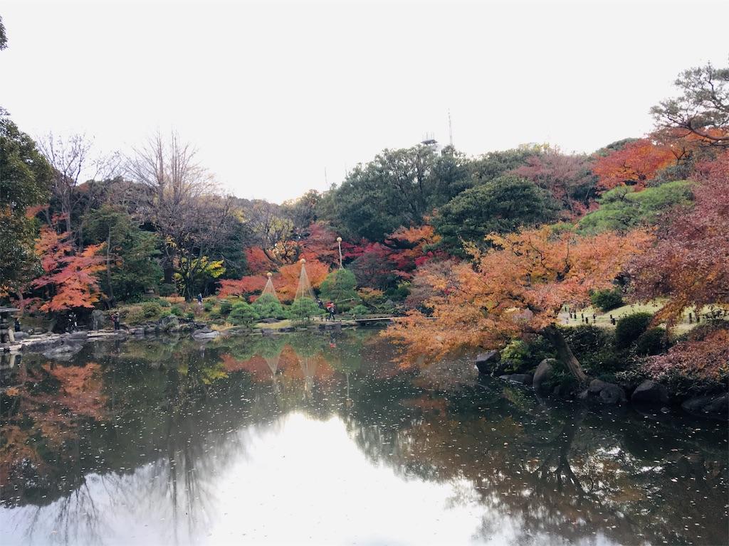 f:id:TokuheiKumagai:20191206230355j:image