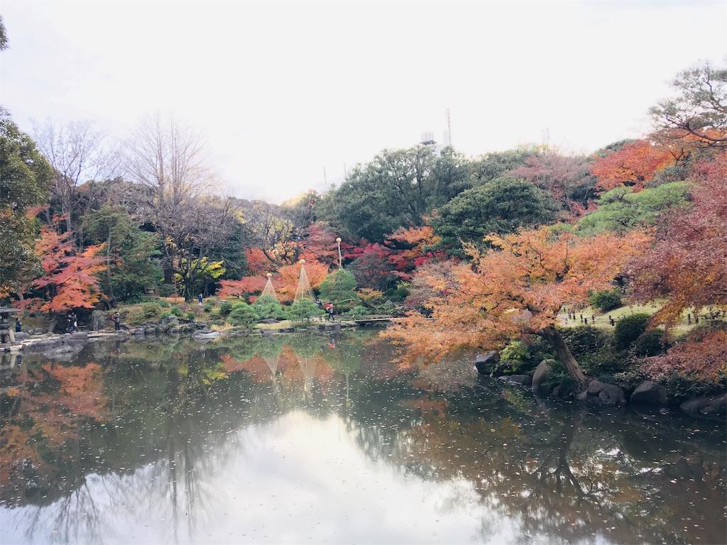 f:id:TokuheiKumagai:20191206230359j:image