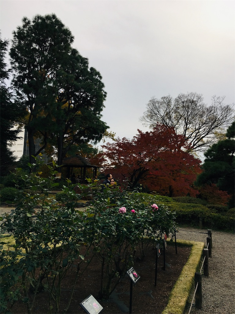 f:id:TokuheiKumagai:20191206230402j:image