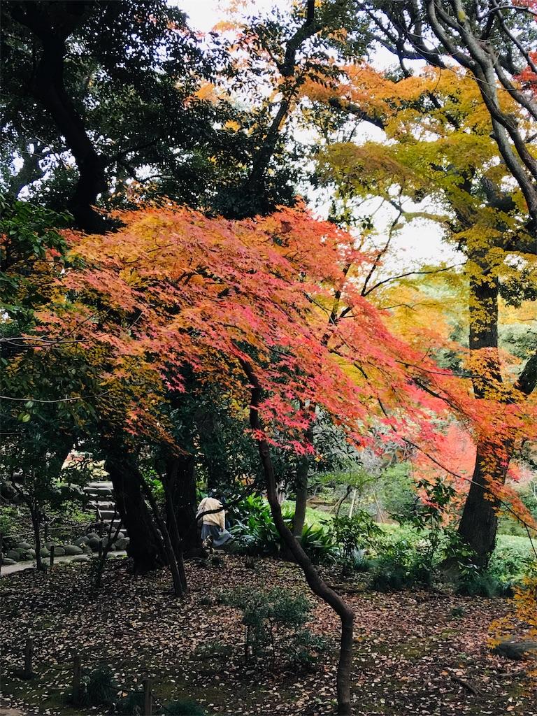 f:id:TokuheiKumagai:20191206230407j:image