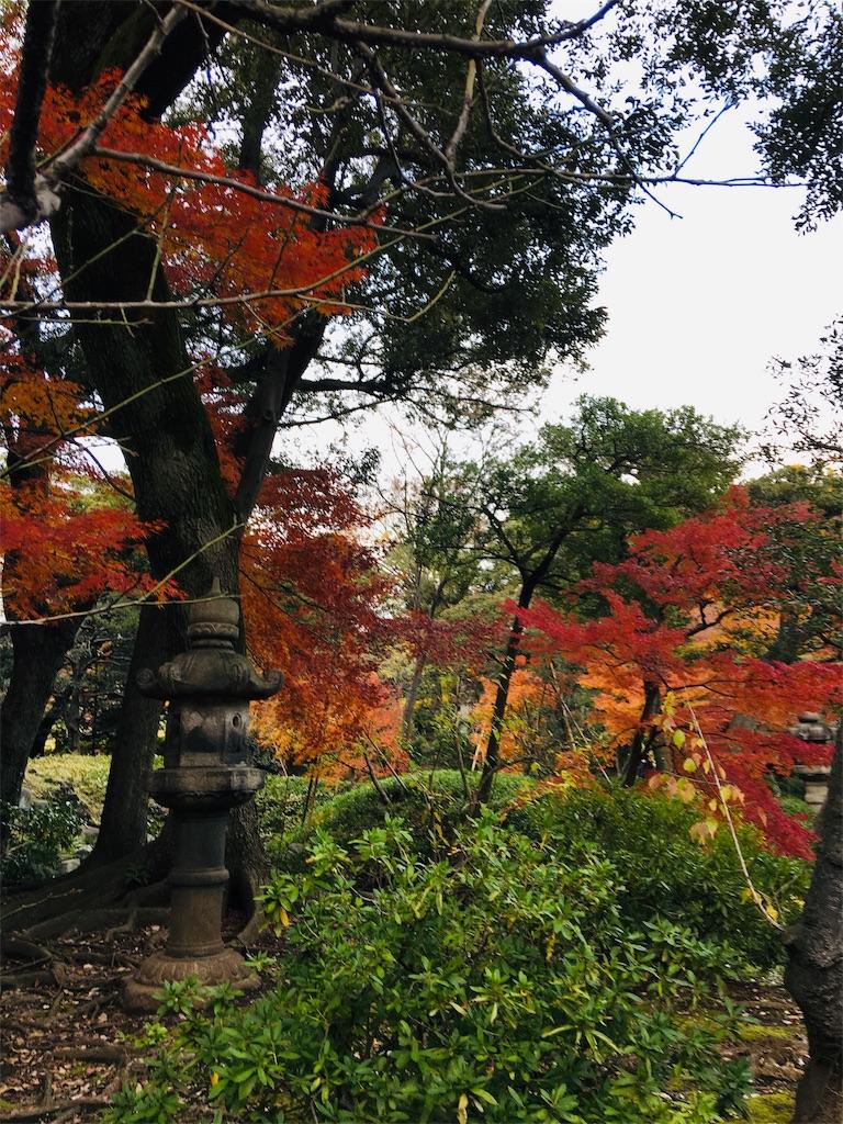 f:id:TokuheiKumagai:20191206231540j:image