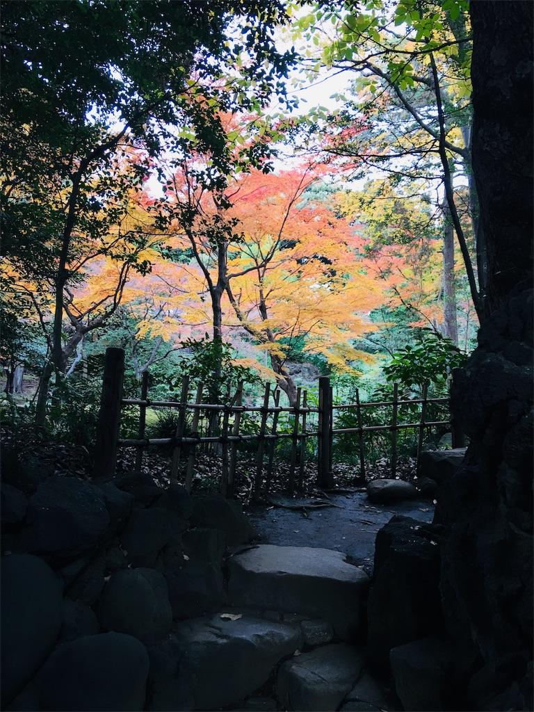 f:id:TokuheiKumagai:20191206231638j:image