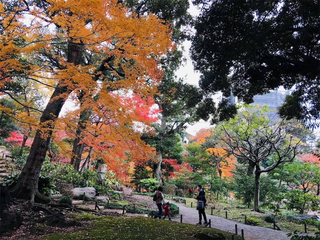 f:id:TokuheiKumagai:20191206231710j:image