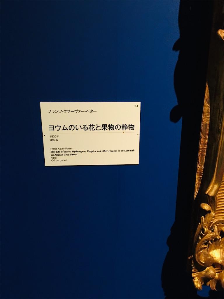 f:id:TokuheiKumagai:20191220210815j:image
