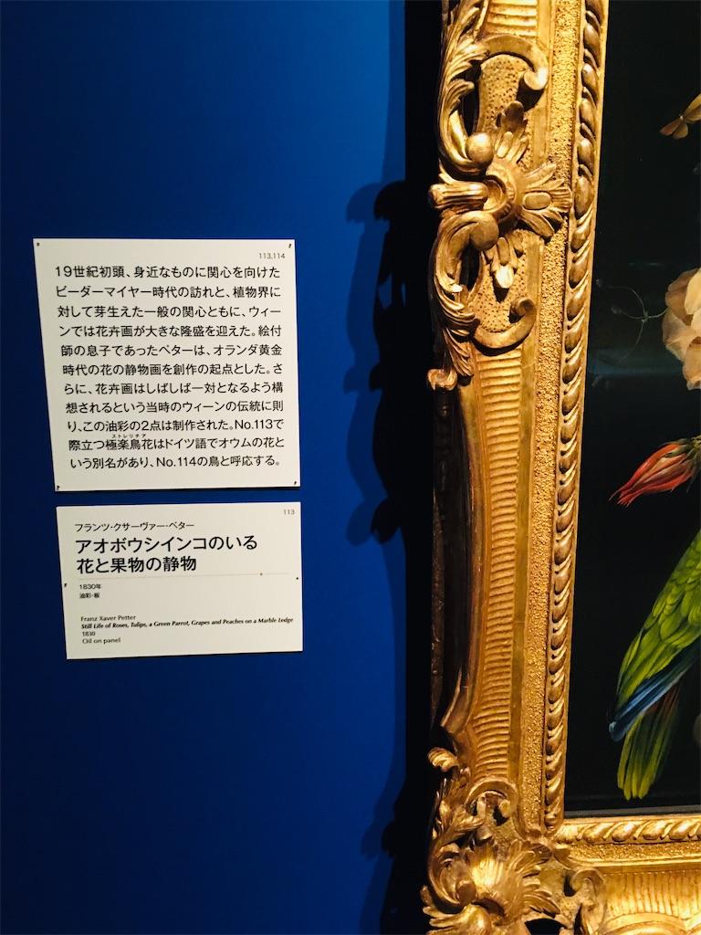 f:id:TokuheiKumagai:20191220210849j:image