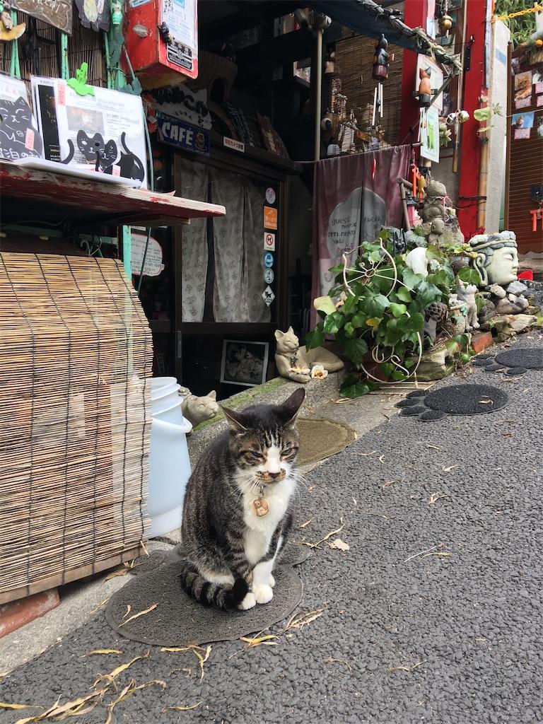 f:id:TokuheiKumagai:20200117215116j:image