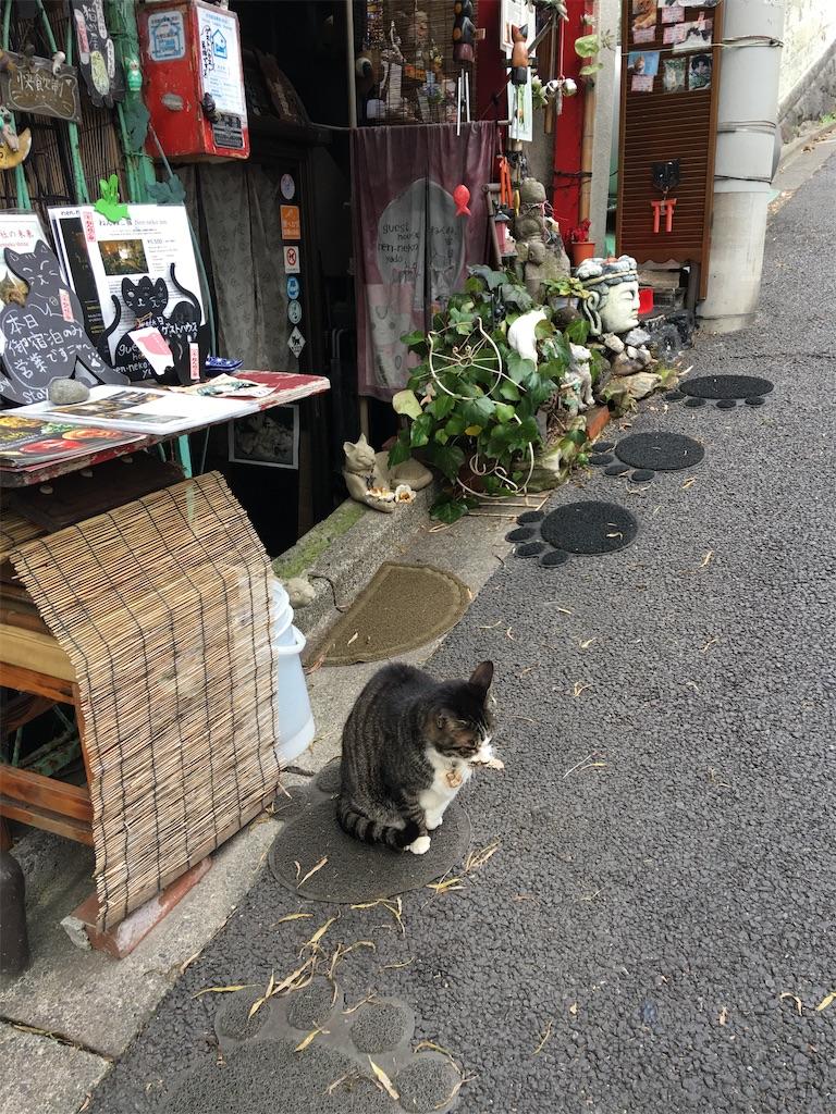 f:id:TokuheiKumagai:20200117215224j:image