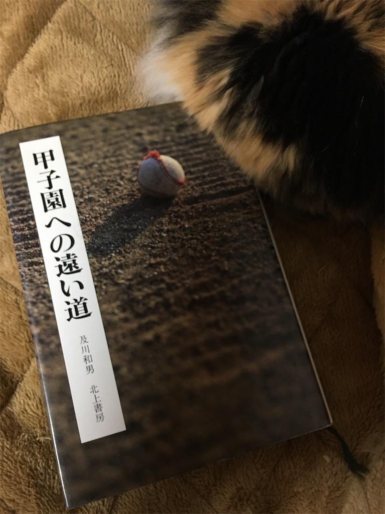 f:id:TokuheiKumagai:20200127221814j:image