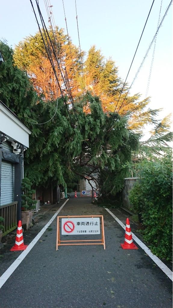 f:id:TokuheiKumagai:20200210221928j:image