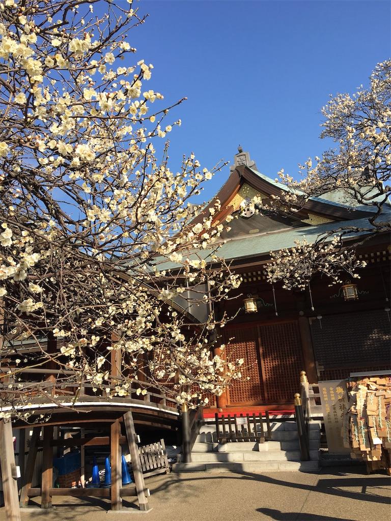 f:id:TokuheiKumagai:20200212233620j:image