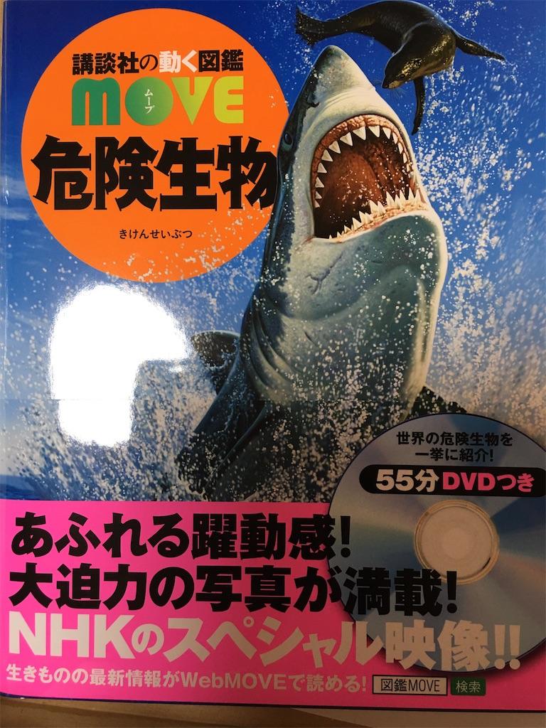 f:id:TokuheiKumagai:20200214220025j:image