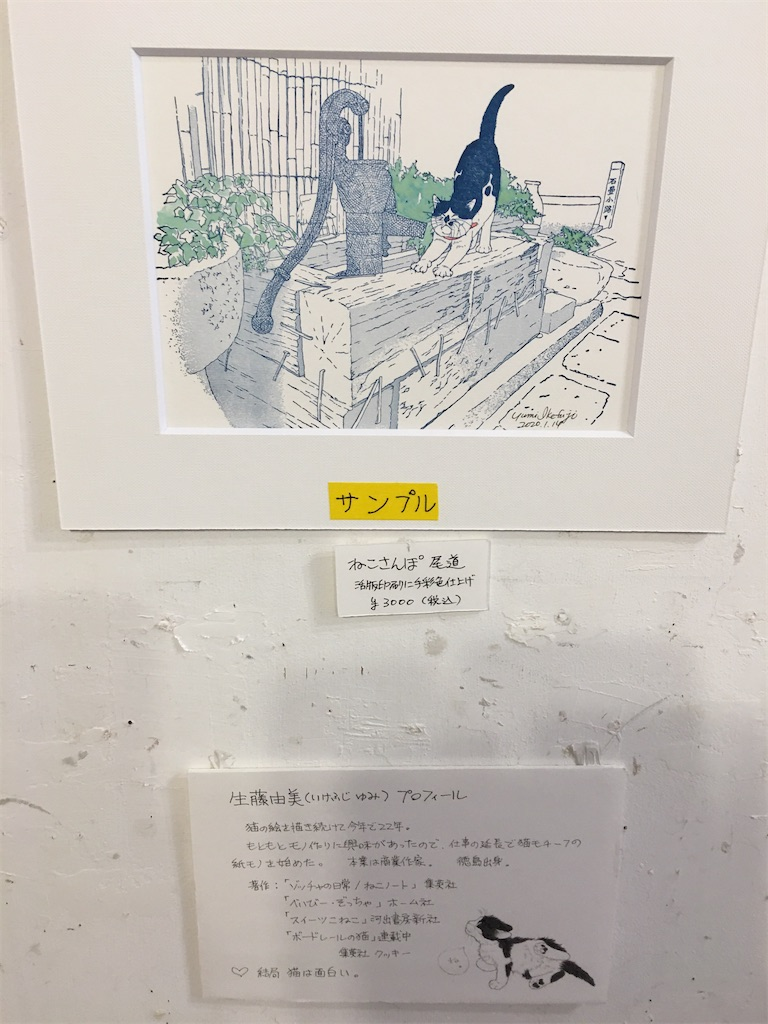f:id:TokuheiKumagai:20200215220825j:image