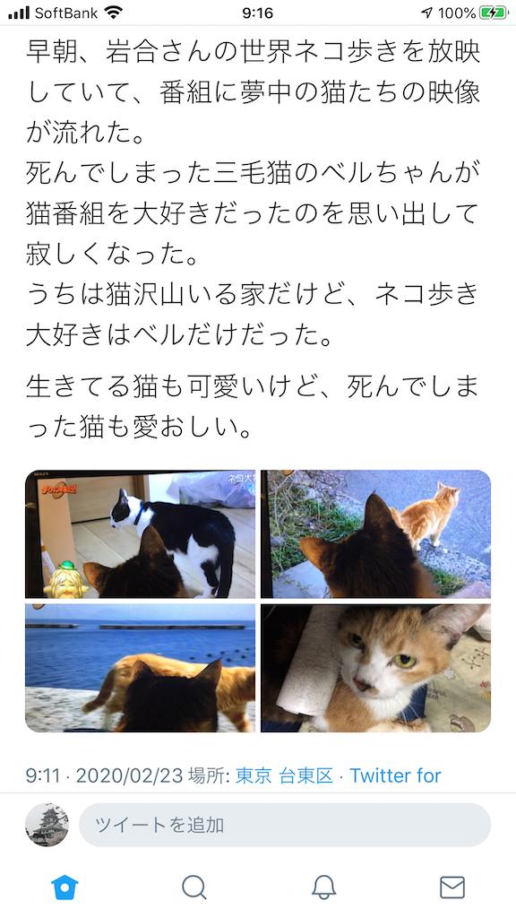 f:id:TokuheiKumagai:20200223093603p:image