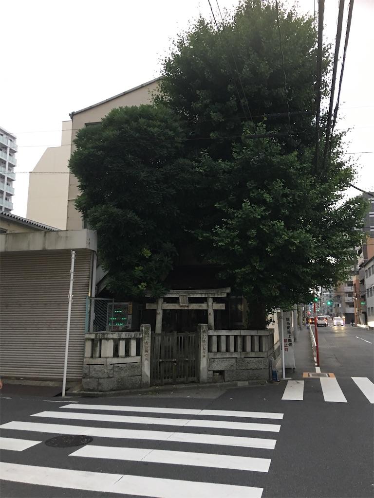 f:id:TokuheiKumagai:20200227200712j:image
