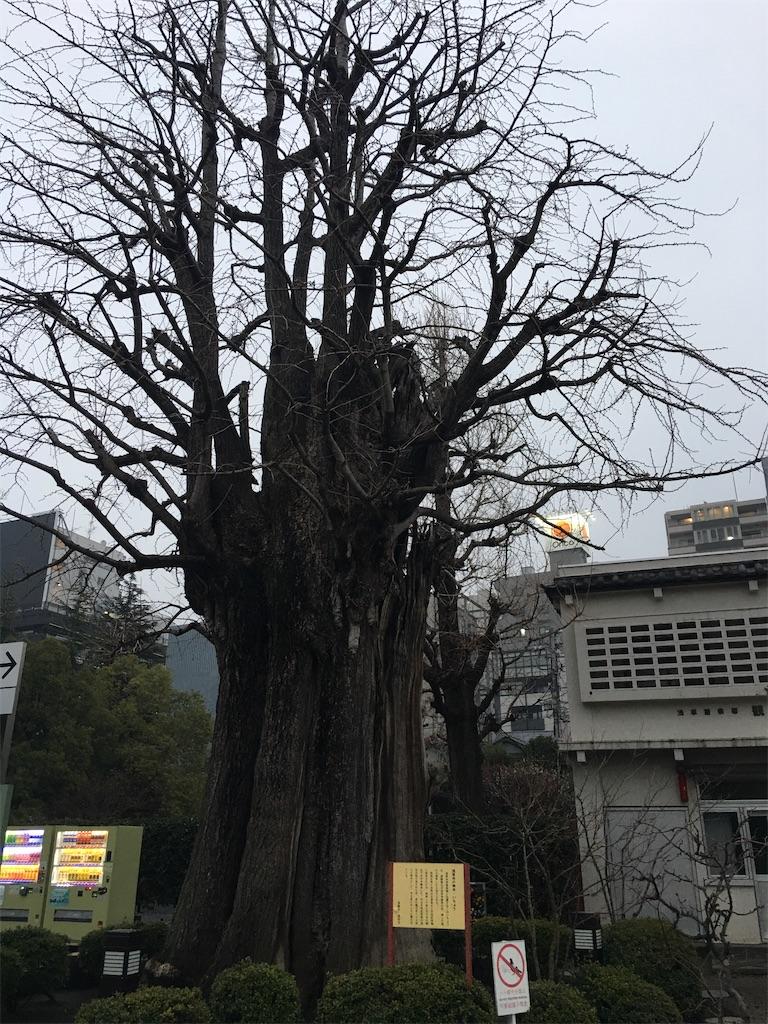 f:id:TokuheiKumagai:20200227201018j:image