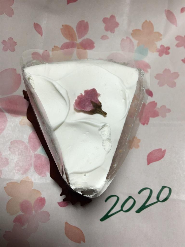 f:id:TokuheiKumagai:20200312225700j:image
