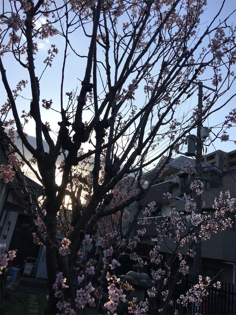 f:id:TokuheiKumagai:20200312225720j:image